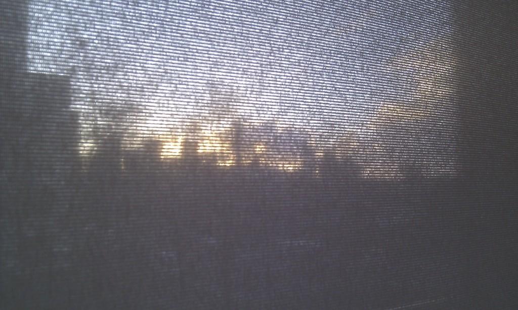Door het zonnescherm: een stukje skyline van Den Haag.